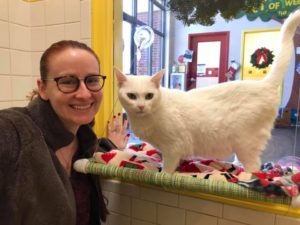 white cat angel adopted