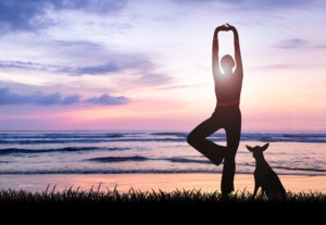 Silhouette of young woman practising yoga being one perfect harmony with nature facing ocean on sunset with her dog